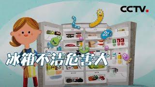 《健康之路》 20201024 厨房健康隐患(三)| CCTV科教 - YouTube
