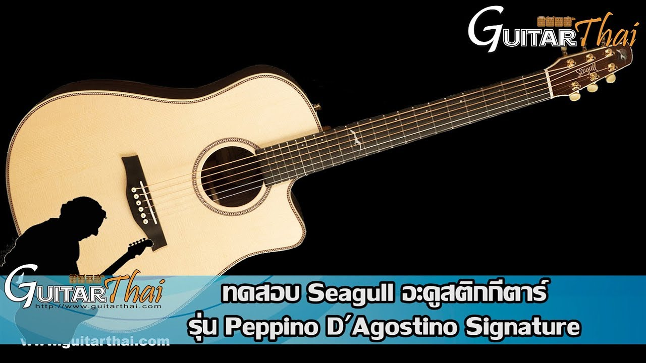Seagull Peppino DAgostino Signature Acoustic Electric Guitar Review