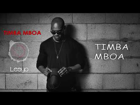Leeyo - TIMBA MBOA [Vidéo Lyrics]