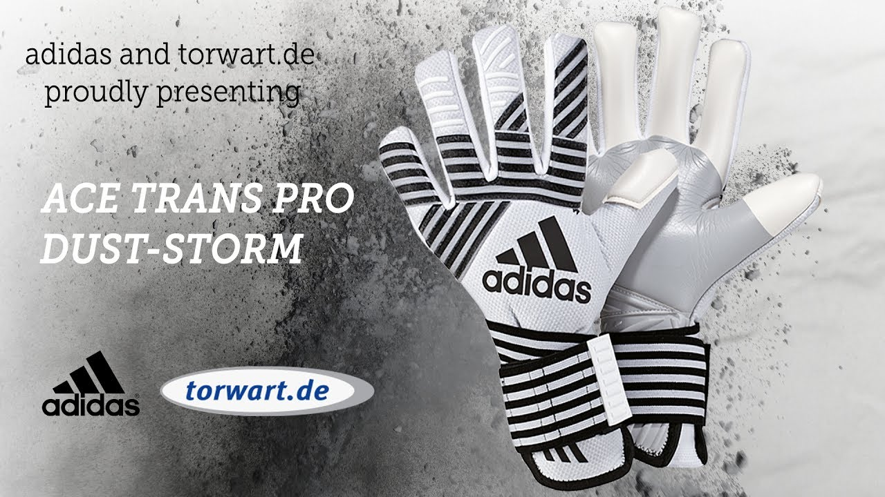 free shipping 61b11 c1e59 Adidas Ace Trans Pro Dust Storm - Torwarthandschuh 2017