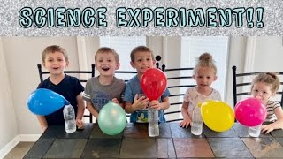 Science Experiment For Kids | Learning Activity for Kids (Ciencia Para Niños)