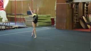 Соревнования по спортивной гимнастике 4.MP4