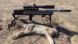 Southern California Air Rifle Jack Rabbit Hunting American Air Arms .357 Slayer