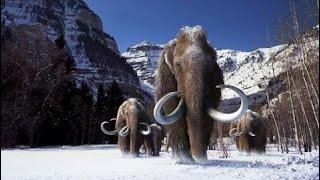 Mamuts, gigantes de la edad de hielo - Documental