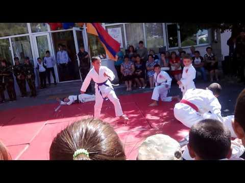Կարատե Դո