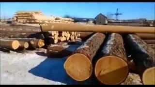 Производство оцилиндровыанного бревна торцовка и нарезка чаш(Производство оцилиндрованного бревна и профилированного бруса. Изготовление срубов и домокомплектов..., 2017-01-22T19:02:41.000Z)