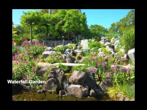 Heather Farm Park and Gardens, Walnut Creek, CA