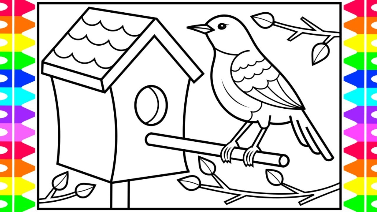 how to draw a bird for kids  bird drawing and coloring