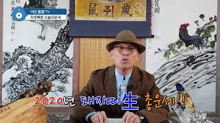 2020년 경자년 돼지띠生 1년총운세 토정비결 사주팔자 운세