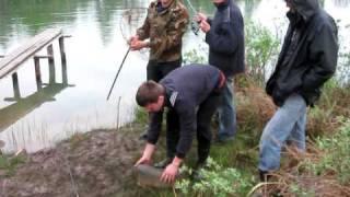 карп 8кг на легкий спининг (karp fishing)(вываживание карпа весом 8кг из карьера. удилище-легкий спининг jaxon 10-30г.)))))))), 2010-05-12T15:02:21.000Z)