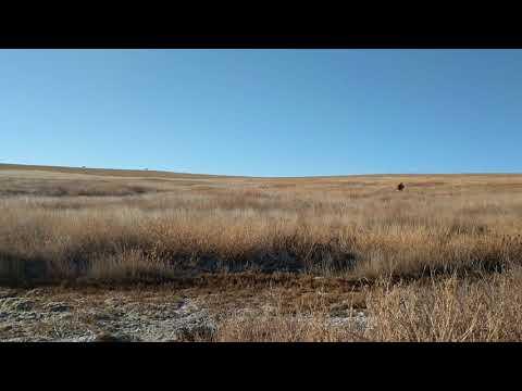 Deer hunting in Butte County, South Dakota