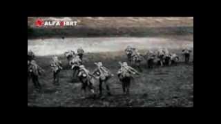 100 Jahre Erster Weltkrieg - Filmaufnahmen von der Front in FARBE !
