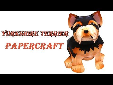 Papercraft Animal : Yorkshire Terrier (Yorkie) | Papercraft 99