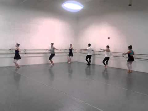 Week 2 Adult Ballet