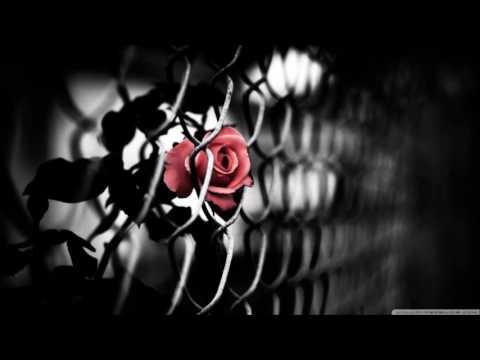 Muttonheads & Shebica - Brave (Joe Dabbler Remix) HD