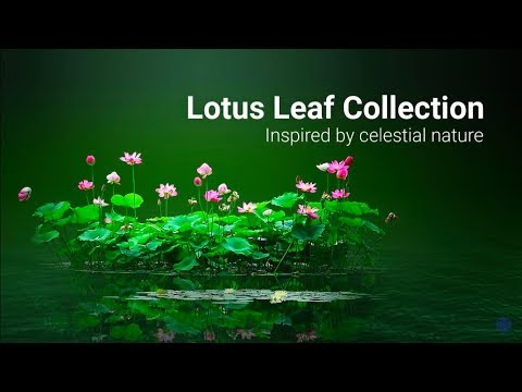 LOTUS LEAF COLLECTION
