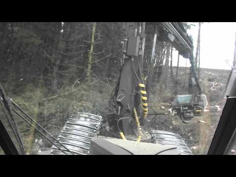 Forestry Ponsse Ergo Harvester Cutting - In Cab View