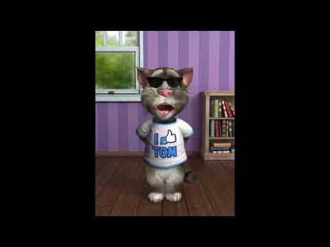 Les vérités de Tom le Chat ǀ On attend quoi pour décorer Iron Biby ?