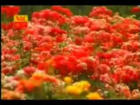 Zhang Xiao Ying (in Indonesian) - Liu Yun - 张小英 - 流云 (印尼文版)