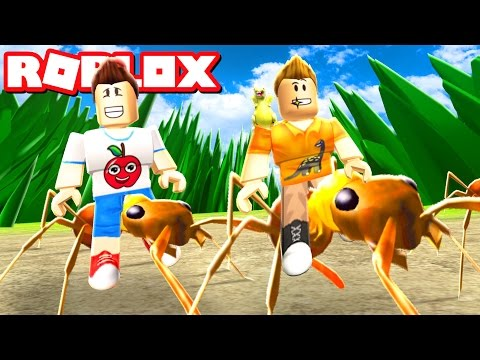 Sketch and Corl Become Ants in Roblox!
