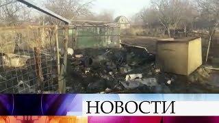 Десятки домов сгорели за сутки в российских регионах в результате природных пожаров.