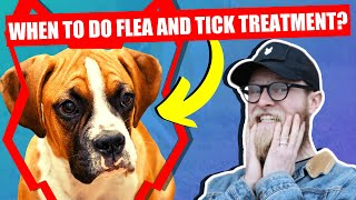 WHEN SHOULD I FLEA AND TICK MY BOXER PUPPY