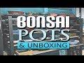 BONSAI POTS -  (Quality Pots, Cheap Pots, Plastic Pots & Unboxing)
