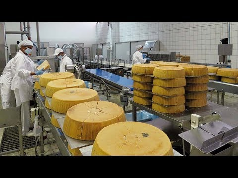 Amazing Cake Automated Processing Machines in Factory - Ice Cream Cake, Cheese Cake & Chocolate Cake