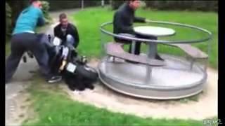 Скутер и карусель  лучший прикол
