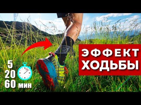 Что происходит во время ходьбы в нашем организме за 5,20,60 минут? (Почему нужно ходить каждый день)