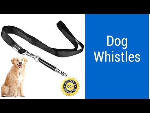 top-3-best-dog-whistles-to-buy-2018---dog-whistles-reviews