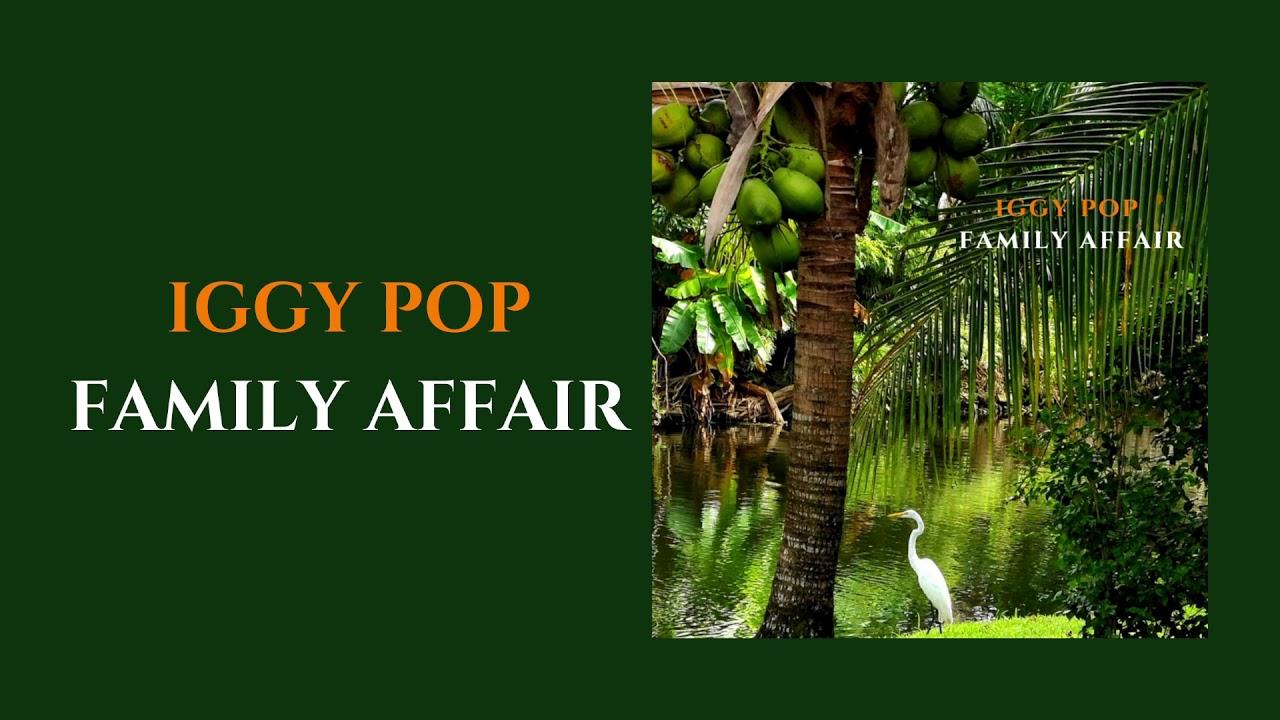 Iggy Pop - Family Affair (Official Audio)