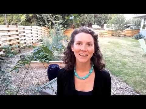 Meditation Coaching Week 2