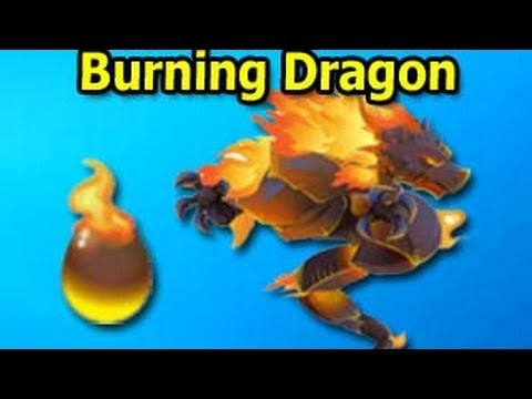 Burning Dragon Review from Dragon City Attacks and Level Up Fast Review