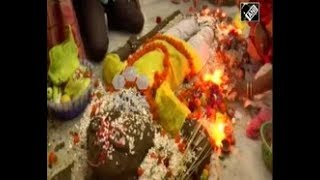 India News - Hindu devotees in parts of India celebrate 'Govardhan Puja' festival