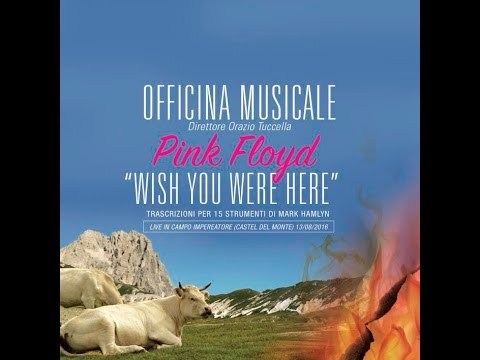 Pink Floyd Wish You Were Here Full album Officina Musicale live (unplegged)