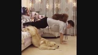 Cute Pet Animals' Life Videos #01(爆笑宠物篇)