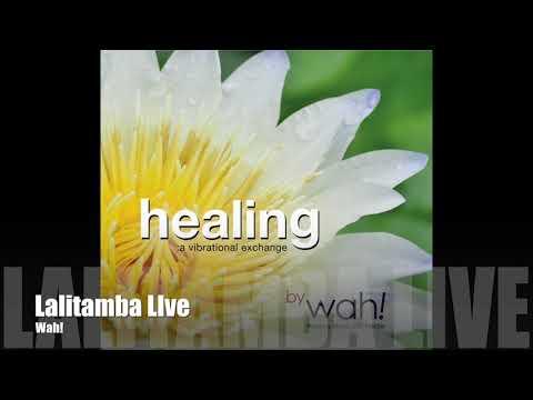 Wah! HEALING: A VIBRATIONAL EXCHANGE - Lalitamba Live