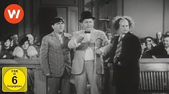 Chaos vor Gericht (Disorder in the Court) | The Three Stooges