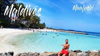 Наш новый отель на Маафуши и пляж на острове. (Мальдивы)