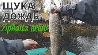 Рыбалка на спиннинг осенью в дождь. Ловля щуки твичингом.