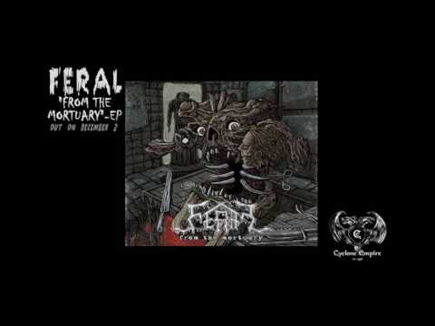 FERAL - The Cult Of The Head  (Official Audio Video)