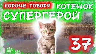 КОРОЧЕ ГОВОРЯ, КОТЕНОК СУПЕР ГЕРОЙ 37 [От первого лица] Я бездомный котенок Лайки