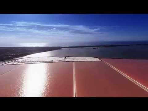 Cheetham Salt Corporate Video