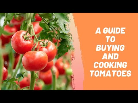 A Guide To Buying And Cooking Tomatoes