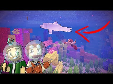 DOLPHINS EVERYWHERE!! - The Aquatic Challenge #05