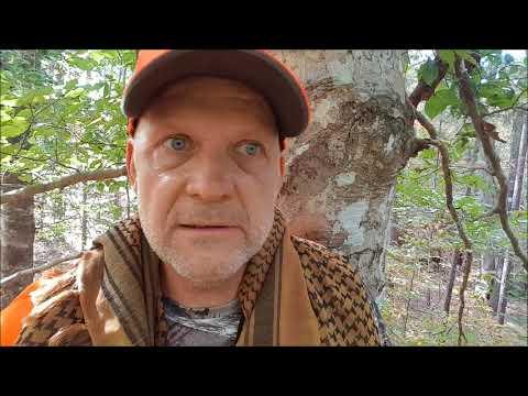 First Deer Hunt- PHL Texas