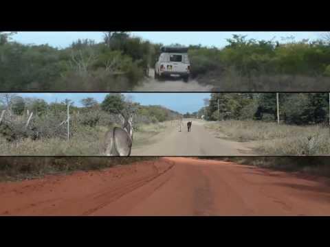 Driving in Mozambique / dirigir através de Moçambique (2013)