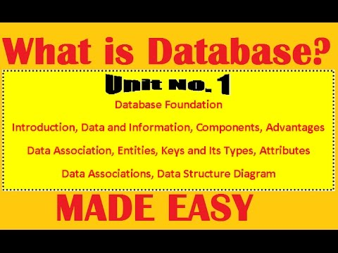 What Is Database | Types Of Database | Advantages Of Database | DBMS