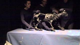 Bunraku Style Cat Puppet
